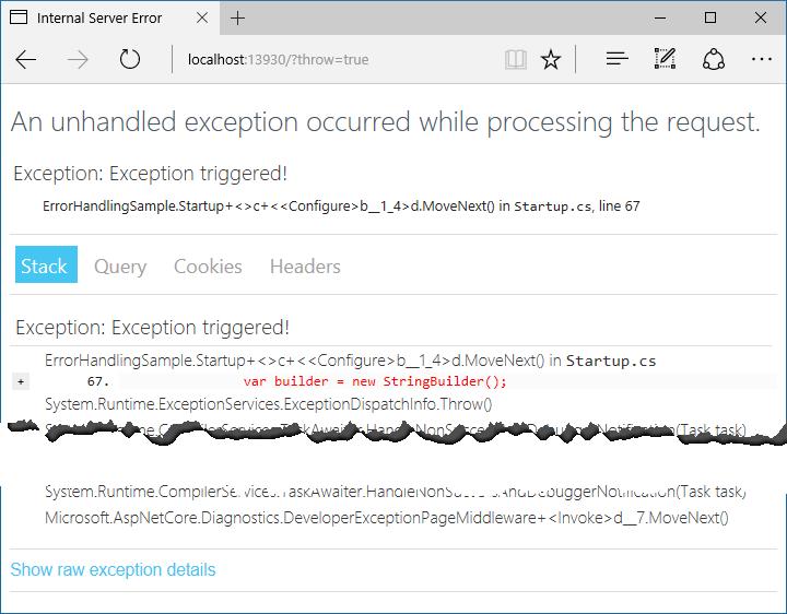 1developer-exception-page